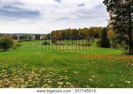 Uncultivated farmland landscape near Cesis town, Latvia