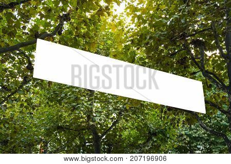 Banner Hanging In Trees Public Park Blank Billboard Ad Space Isolated White