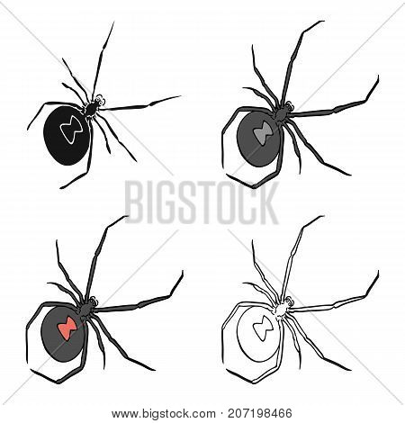 An arthropod bug is an insect.A spider, a predatory insect single icon in cartoon style vector symbol stock isometric illustration .