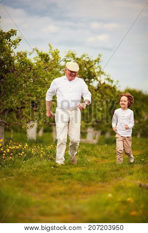 Happy Excited Grandpa And Grandson Running In Spring Garden