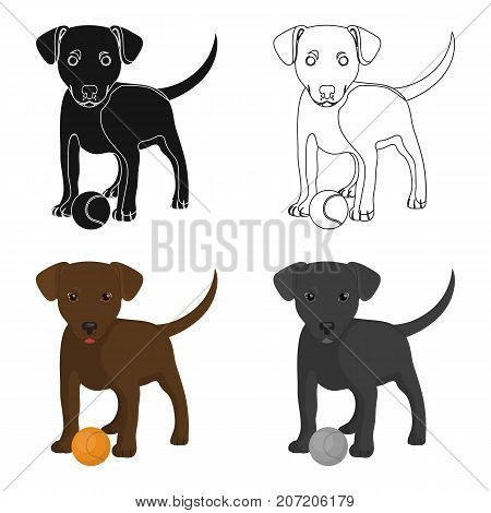 Pet, puppy dog with a ball. Pet, dog care single icon in cartoon style vector symbol stock illustration .