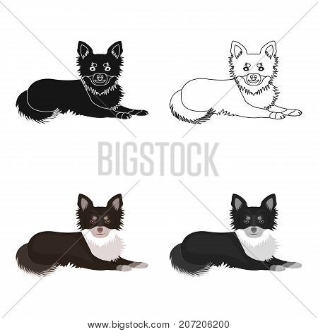 A pet, a lying dog. Pet, dog care single icon in cartoon style vector symbol stock illustration .
