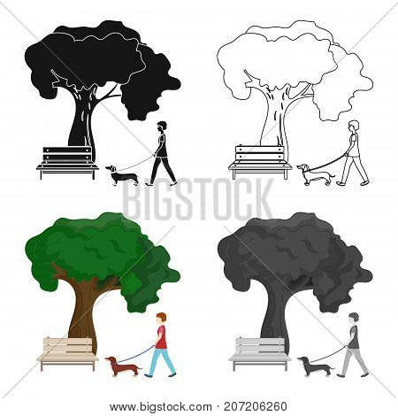 Tree and bench, woman walks a pet in the park. Pet, Dog care single icon in cartoon style vector symbol stock illustration .