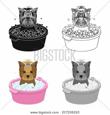 Bathing pet puppy in a bowl. dog, Pet, dog care single icon in cartoon style vector symbol stock illustration .