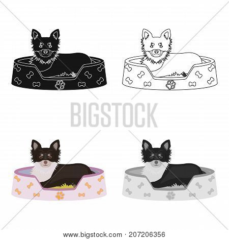 Lounger for a pet, a sleeping place. Dog, care of a pet single icon in cartoon style vector symbol stock illustration .