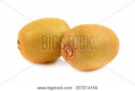 kiwi fruit isolated on white background whole kiwi on white