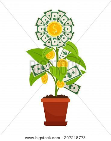 Flower money isolated on white background. Investment finance growth investment concept