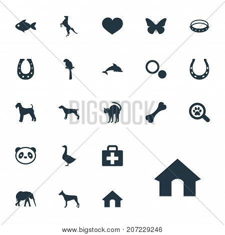 Elements Seafood, Safari, Hippodrome And Other Synonyms Box, Mare And Ocean.  Vector Illustration Set Of Simple Animals Icons.