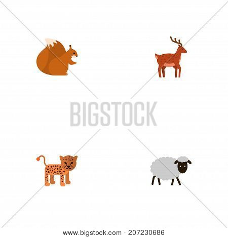 Flat Icons Panther, Moose, Chipmunk And Other Vector Elements