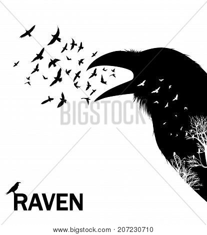 Croaking crow or raven. Illustration with double exposure effect.
