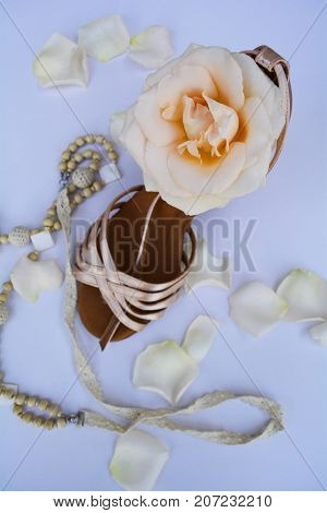 glass slipper for Cinderella with a delicate rose flower poster