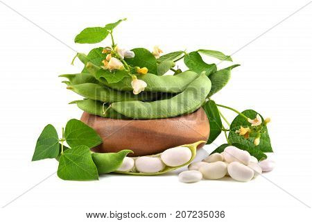 Soy Beans With Leaves