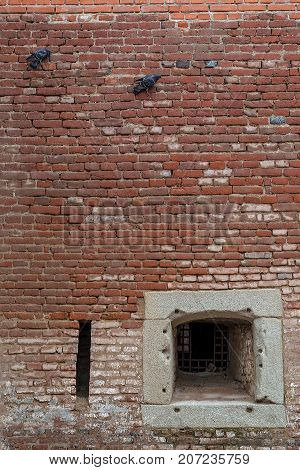 Background with old fortress wall from Alba Carolina Fortress and two pigeons hanging from walls. Alba Iulia Romania.