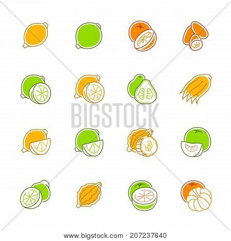 File type icons - GraphicsCitrus fruits icons. Citrus fruits vector illustration. Fruits and seasoning in filled outline style. Vegetarian food signs. Professional vector icons for fruits and spices.