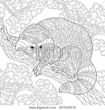 Coloring page of raccoon sitting on tree branch. Freehand sketch drawing for adult antistress coloring book in zentangle style.