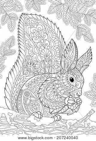 Coloring page of squirrel eating pine cone. Freehand sketch drawing for adult antistress coloring book in zentangle style.