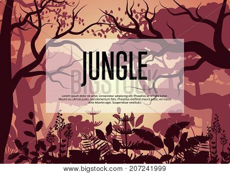 Morning tropical jungle poster. Floral landscape, wildlife concept, wood silhouettes, evening rainforest background. Night forest backdrop with trees and bush vector illustration in cartoon style