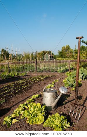 allotment and garden tools