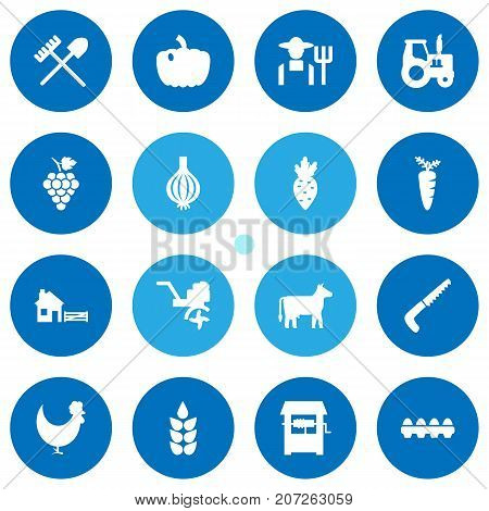 Collection Of Kine, Ranch, Rooster And Other Elements.  Set Of 16 Harvest Icons Set.