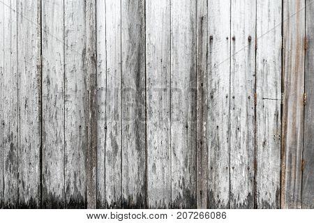 Old wooden rustic background. Vintage door detail
