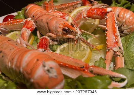 Uncooked Orange Lobsters, Aquatic Crustaceans Inside White Tray