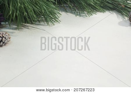Winter background of holiday decoration. Close up of pine branch with strobila on white backdrop, free space. Christmas greeting, celebration and New Year festive decor concept