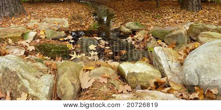 Autumn pool