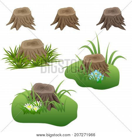 Set of tree stubs in grass and flowers isolated. Elements for landscape scene. Can be used as game asset. Vector illustration