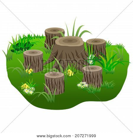 Composition with tree stubs in grass and flowers for landscape or garden scenes. Vector illustration