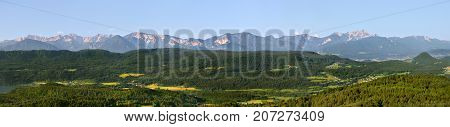 Mountains Landscape Panorama, summer forest in Alps