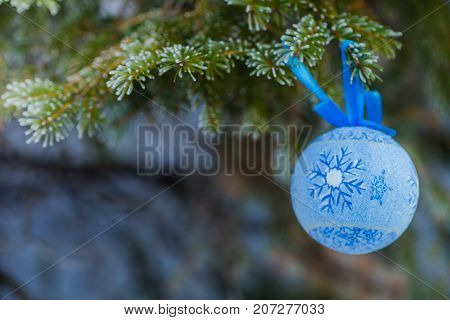 A blue fur-tree toy on a branch of blue fir-tree blue green white Colorado blue spruce Picea pungens covered with hoarfrost. New Year's Bekraund. A place for a copy-paste.