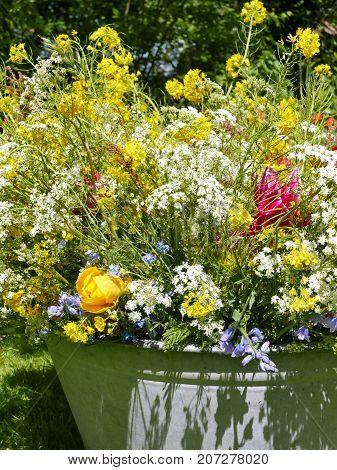 Peony Bouquet In Garden