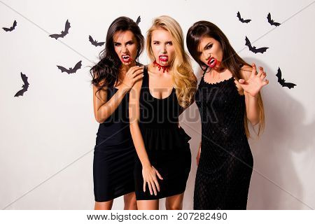 Elegant playful mystical beauty of death. Gorgeous satanic bad withes zombies with hot figures fashionable dark dresses shows canines and arm palm with claws bonding on white background bats