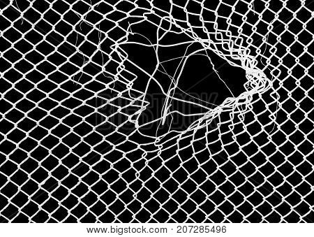 white grid on a black background . Photo of abstract background