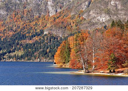 Colorful Autumn Lake Behind Forest And Mountains.