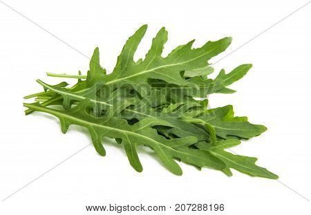rucola organic food isolated on white background