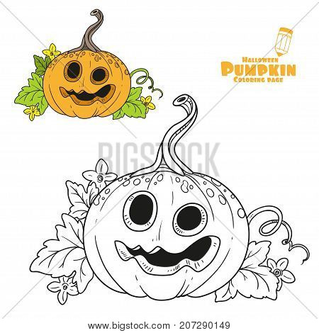 Funny Lantern From Pumpkin With The Cut Out Of A Grin And Leaves Color And Outlined For Coloring Pag