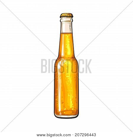 Hand drawn bottle of cold beer, colorful sketch style vector illustration isolated on white background. Hand drawn bottle of ice cold beer, lager, ale, Oktoberfest symbol