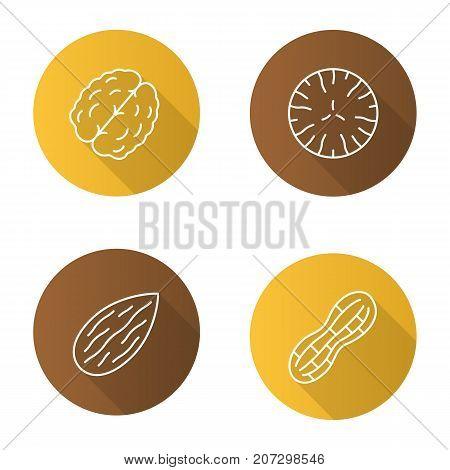 Nuts types flat linear long shadow icons set. Walnut, nutmeg, almond, peanut. Vector outline illustration