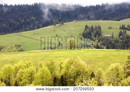 Spring bright morning in the Carpathian mountains. The rural hut stands on the of the mountain. Beautiful typical rural scenery of Carpathians Ukraine