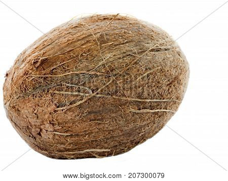 tropical coconut fruit isolated on white background closeup
