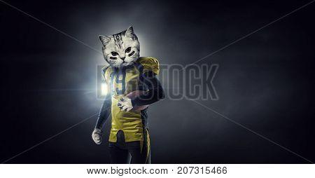 Furious cats team. Mixed media