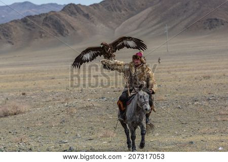 BAYAN-ULGII, MONGOLIA - SEP 30, 2017: Mongolian Kazakh Eagle Hunter traditional clothing, holding a golden eagle on his arm in desert mountain of Western Mongolia.