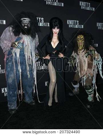 LOS ANGELES - SEP 29:  Cassandra Peterson, Elvira at the Knott's Scary Farm and Instagram Celebrity Night at the Knott's Berry Farm on September 29, 2017 in Buena Parks, CA