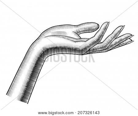 Woman's hand stretching palm up. Vintage engraving stylized drawing