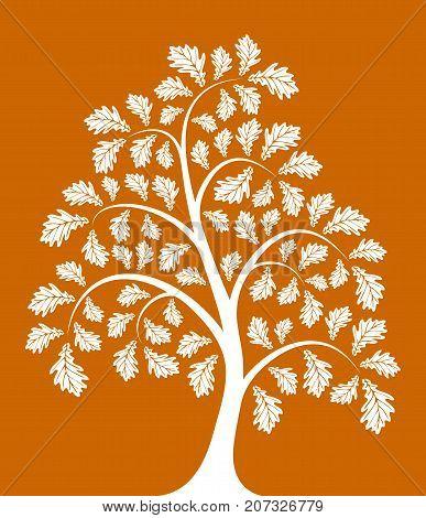 vector autumn oak tree isolated on orange background