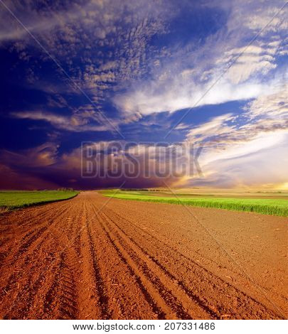 Plowed field in spring time