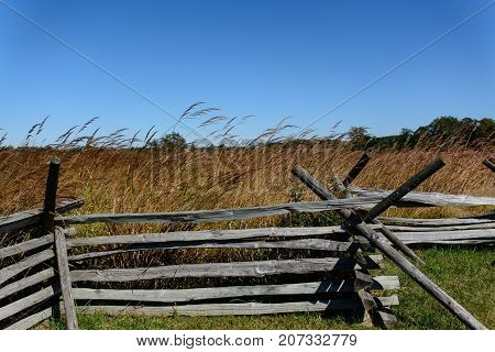 A split rail fence runs from left to right on the bottom of the frame, tall wild grasses behind it, with a clear blue sky background in Gettysburg Pennsylvania, USA.