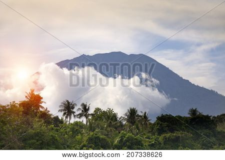 view through the jungle with palm trees on a volcano Agung in clouds. Bali Indonesia