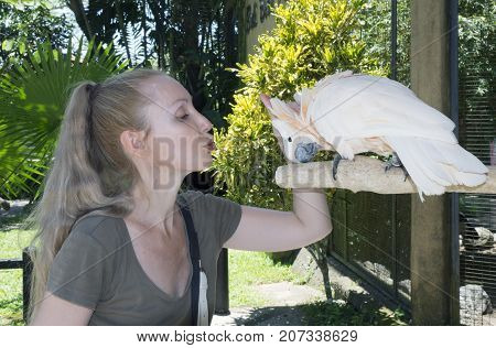 the young attractive woman strokes a white cockatoo parrot on a cop